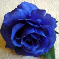 a blue flower - mėlyna gėlė